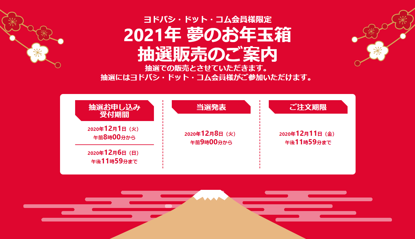 ヨドバシ2021年福袋の中身・ネタバレ大公開!夢のお年玉箱の抽選方法も解説します