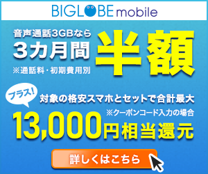 BIGLOBEmobile20190724_incontent